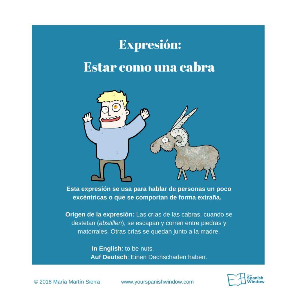 Typische spanische Ausdrücke estar como una cabra