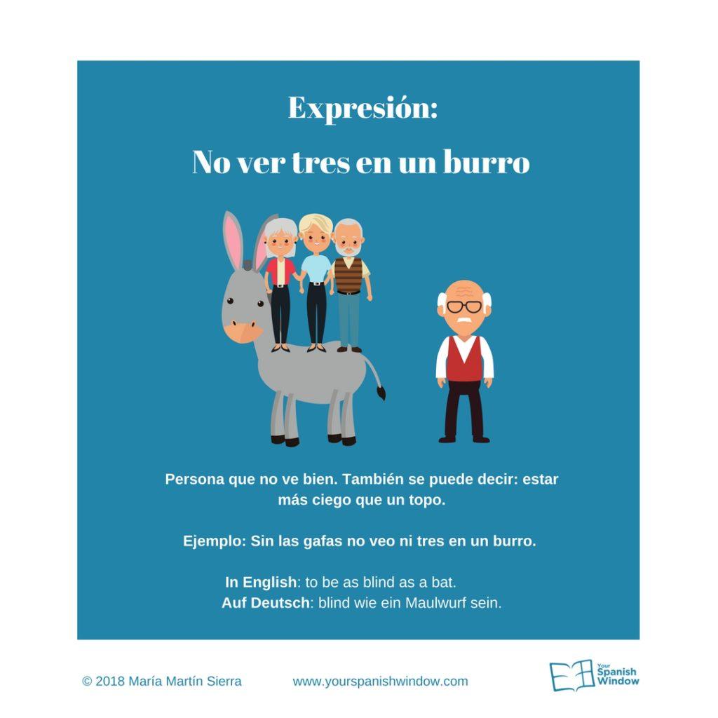 Typische spanische Ausdrücke no ver tres en un burro
