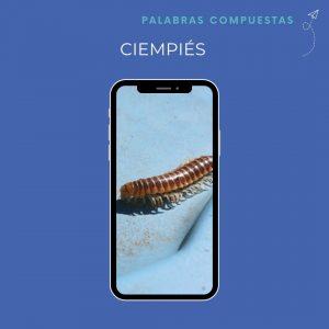 palabras compuestas ciempiés spanischlernen