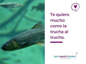 spanische sprueche spanischlernen