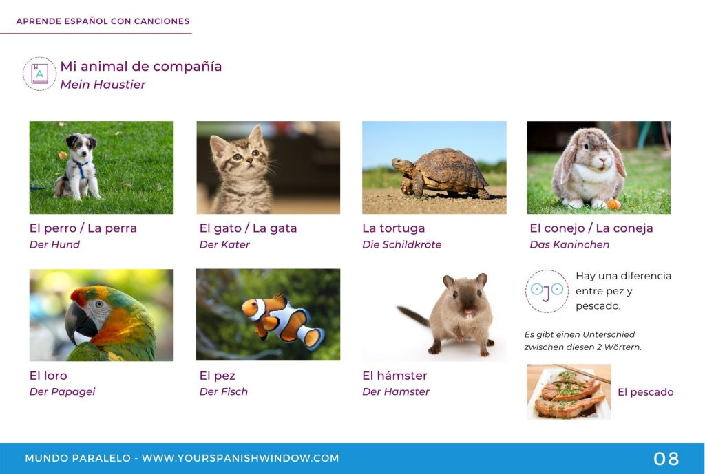 spanischlernen musik haustiere mascotas yourspanishwindow